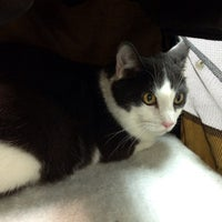 Photo taken at Flemington Veterinary by Debbie B. on 3/29/2014