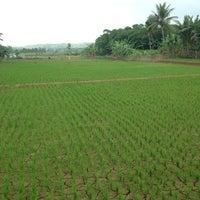 Photo taken at Parung Panjang by Marcella A. on 12/15/2013