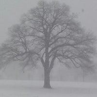 Photo taken at Chartwell Golf and Country Club by Lori B. on 1/21/2014