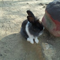 Photo taken at Rabbit Park by Baby on 7/22/2013