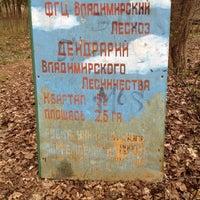 "Photo taken at Дендрарий лесопарка ""Дружба"" by Костя З. on 4/22/2014"