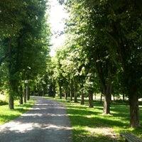 7/7/2013 tarihinde Şule S.ziyaretçi tarafından Soğanlı Botanik Parkı'de çekilen fotoğraf