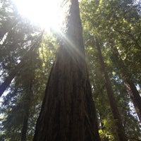 Photo taken at Pfeiffer Big Sur State Park by Corinne L. on 6/20/2013