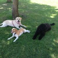 Photo taken at Dog Point Jardins da Parede by Sandra L. on 7/16/2013