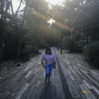 Photo taken at Parque Ambiental Bosques de La Frontera by Mary H. on 2/1/2017