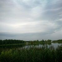 Photo taken at Ozolnieku ezers (Ozolnieki Lake) by Sintija on 7/28/2016