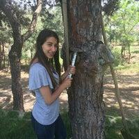 Photo taken at Bilgera Yazılım by Burcu K. on 5/7/2015