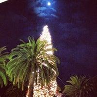 Photo taken at Fashion Island Gigantic Christmas Tree by Captain on 11/16/2013