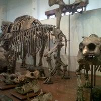 Photo taken at Perpustakaan Museum Geologi Bandung by my b. on 3/14/2013