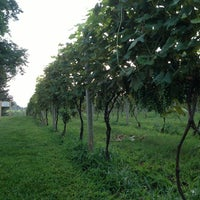 Photo taken at Crossing Vineyards and Winery by Richard F. on 8/10/2013