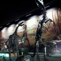 Photo taken at Muséum d'Histoire Naturelle by Diana L. on 7/13/2013