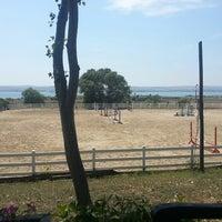 7/7/2013 tarihinde Nataliia Y.ziyaretçi tarafından Gürman At Çiftliği'de çekilen fotoğraf