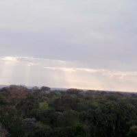 Photo taken at Museu da Amazônia (MUSA) by ميتزي ليموس on 7/20/2015