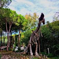 Photo taken at Dino Park Maxx Royal by Adnan C. on 11/13/2016