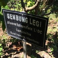 Photo taken at UPT Materia Medica Dinas Kesehatan Provinsi Jawa Timur by Andri R. on 5/21/2015