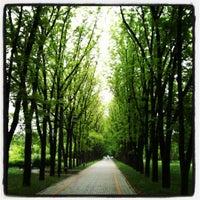 Снимок сделан в Ботанический сад КубГАУ им. И.С. Косенко пользователем Vita V. 5/13/2012