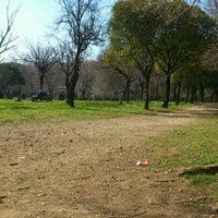 Foto scattata a Villa Gordiani da Enzo M. il 2/29/2012
