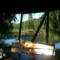 Photo taken at Restaurant Pestisorul de Aur by Levi S. on 6/14/2011