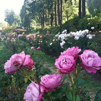 Photo taken at International Rose Test Garden by Joe P. on 7/10/2012