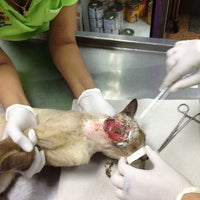 Photo taken at Mahanakhon Animal Hospital by Un@Earng K. on 4/25/2012