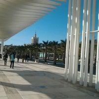 Foto tomada en Palmeral de las Sorpresas por Diego N. el 12/31/2011