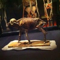 Das Foto wurde bei Evolutionsbiologiskt Centrum (EBC) von Hanna Victoria M. am 9/8/2012 aufgenommen