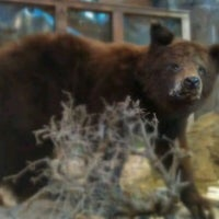 Photo taken at Bass Pro Shops by Tom S. on 7/1/2011
