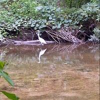 รูปภาพถ่ายที่ Saddle River County Park - Wild Duck Pond โดย Ken S. เมื่อ 8/25/2012