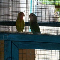 Photo taken at Zoo by Ampire_007 by Ampire_007 on 2/27/2011