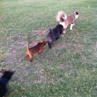 Photo taken at Camp Barkeley Dog Park by Ceci R. on 6/25/2012