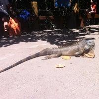 Photo taken at Vallarta Adventures by Harini S. on 3/24/2012