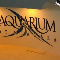 Photo taken at Aquarium of Niagara by Robyn S. on 7/9/2012