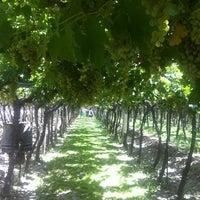 Foto tomada en Casa del Visitante - Bodega Familia Zuccardi por Deirdre O. el 3/7/2012