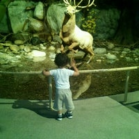 Photo taken at Albany Museum by Michelle R. on 8/11/2012