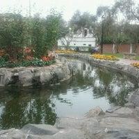 Foto tomada en Bosque El Olivar por Jack C. el 7/20/2012
