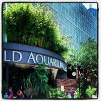 Photo taken at Dallas World Aquarium by Marissa K. on 5/28/2012
