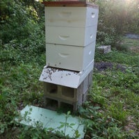 Photo taken at Featherhead Hives by Lisa L. on 6/18/2013