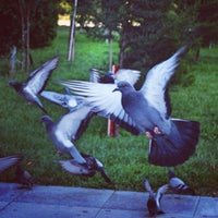 Photo taken at Hüseyn Cavid parkı by Nargees B. H. on 7/14/2013