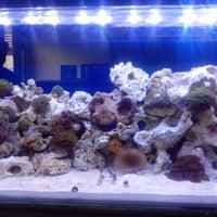 Photo taken at Tropical Aquarium by Felipe M. on 7/25/2013