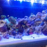 Photo taken at Tropical Aquarium by Felipe M. on 8/28/2013