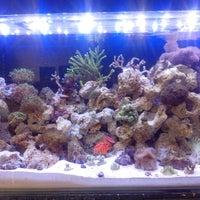 Photo taken at Tropical Aquarium by Felipe M. on 9/23/2013