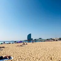 8/20/2018にBuse K.がBeach Garden Barcelonetaで撮った写真
