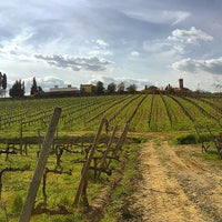 Photo taken at Pietro Beconcini Agricola by Georgette J. on 4/5/2015
