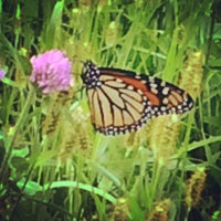 Photo taken at High Cliff Golf Course by lynn f. on 9/5/2014