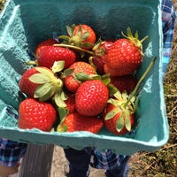 Photo taken at Pappy's Strawberry Patch by Christopher E. on 3/30/2013