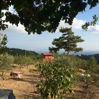 Photo taken at averen seyranlık by Aykın D. on 9/13/2016