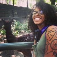 Photo taken at Central Park - Tisch Children's Zoo by Ayesha M. on 6/1/2013