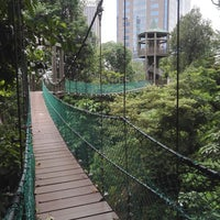 Photo taken at Bukit Nanas Forest Reserve by Luqman M. on 1/14/2018