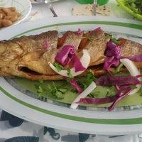 Photo taken at Zeytoon Restaurant | رستوران زيتون by Ghazale M. on 9/11/2015