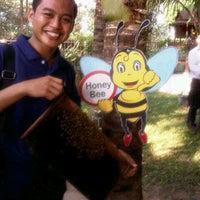 Photo taken at Highland Bee Farm, Pattaya by Echo Darmadi K. on 3/30/2013